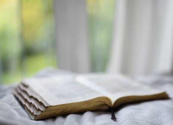 Online Vorträge: Glaubwürdigkeit der Bibel – Erwin Keck